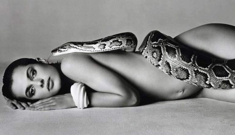 nastassja-kinski-serpent-avedon-featured-auctioned-nudes