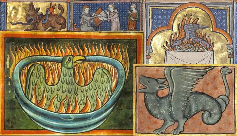 medieval bestiaries winged dragon phoenix